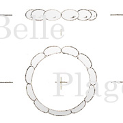 design-fullorder37-2